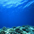 AquaResearch